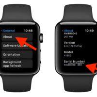 Check Serial Apple Watch trong phần giới thiệu